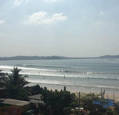 surf weligama